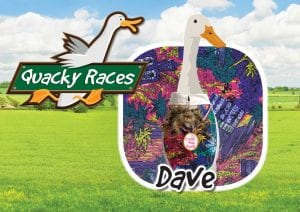 Dave Quacky Races at World of Country Life, Exmouth