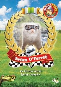 Brian O'Ferret