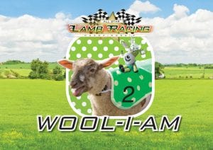 Wool-i-am Lamb National at World of Country Life, Exmouth