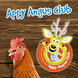 Appy Angus Club at World of Country Life, Exmouth