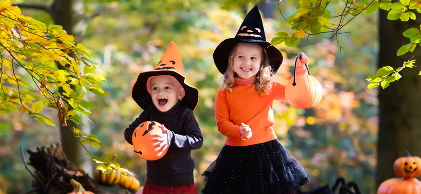 Halloween October Half Term Week at World of Country Life Exmouth Devon