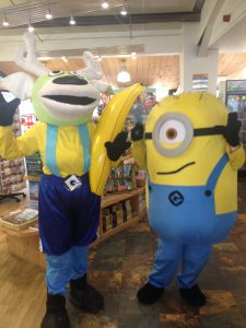 Angus & Minion at World of Country Life Exmouth Devon